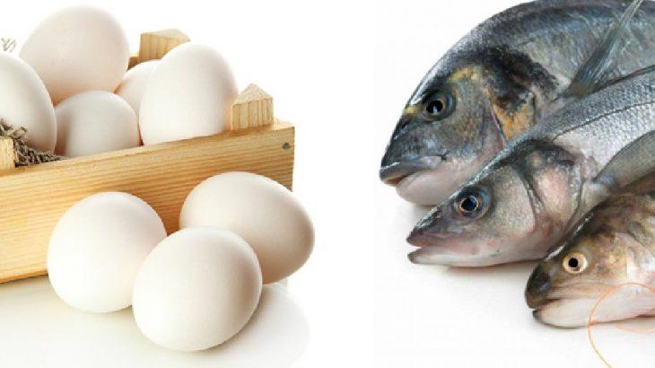 Erdoğan imzaladı: Yumurta ve su ürünlerinde KDV indirimi