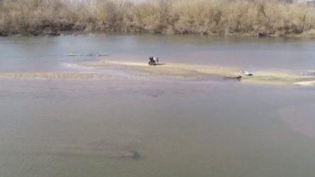 Botla Meriç'i geçmeye çalışan bir aile nehrin ortasında mahsur kaldı