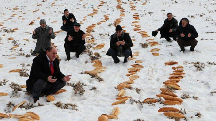 Erzurum'da afetlere karşı 'önlem': Türbe yakınına ekmek bıraktılar