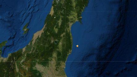 Japonya'da nükleer santral yakınlarında deprem