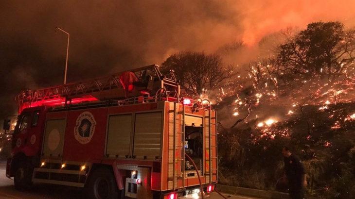 Antalya Kaş'ta orman yangını