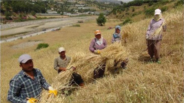 Çiftçiler şehirden köye, köyden şehire gidemiyor