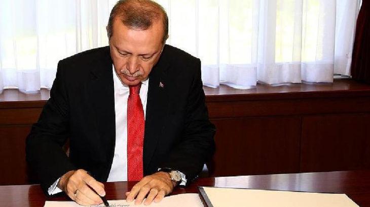 Erdoğan imzaladı: Ormanlar ve kıyılar yeni yağmaya açılıyor