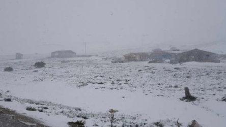Erzincan'da kar fırtınasına yakalanan çoban donarak öldü