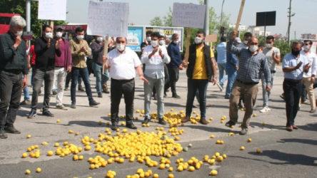 Mersin Erdemli'de limon üreticisi yol kapatıp eylem yaptı
