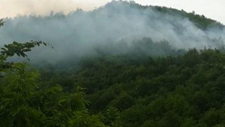 Ordu'da altın madeni çevresinde orman yangını: