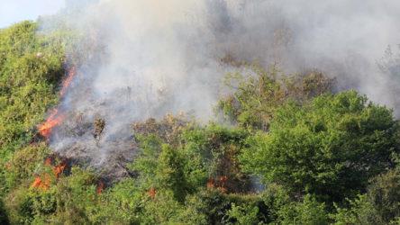 Rize'de orman yangınına yol olmadığı için müdahale edilemiyor