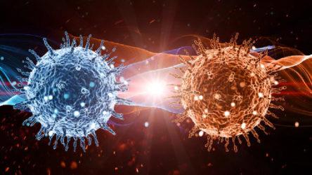 DSÖ: Virüsün en bulaşıcı olduğu dönem hastalığın başlangıç anı