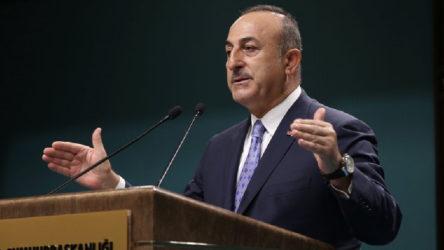 Çavuşoğlu: Bazı ülkeler Türkiye'yi riskli gruba aldı, hayal kırıklığına uğradık
