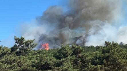 Adana'daki orman yangını hala söndürülemedi