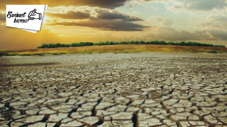 Tülin Tankut yazdı: İklim değişikliği karşısında bireyin tutumu