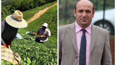 Trabzon'da çay toplarken yılan tarafından ısırılan öğretmen hayatını kaybetti