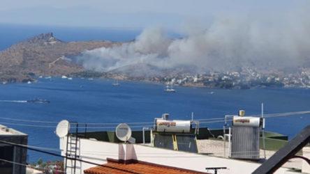 Bodrum Yalıkavak'ta yangın