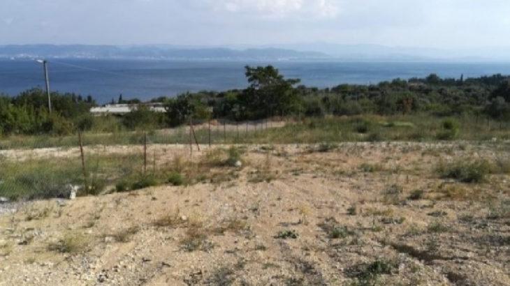 İzmit, Darıca ve Gebze'de kamuya ait taşınmazlar satılıyor