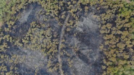 Heybeliada'da kül olan bölge havadan görüntülendi