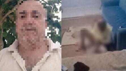 Hatay'da köpeğe cinsel saldırıda bulunan şahıs gözaltında
