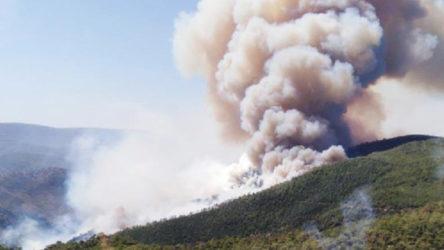 İzmir'de orman yangını ile ilgili bir şüpheli gözaltına alındı