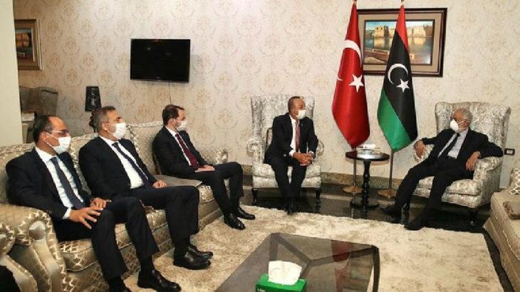 Mısır: Türkiye'nin Arap ülkelerine müdahale etmesine karşıyız