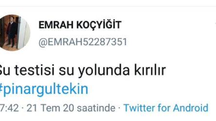 Pınar Gültekin için 'Su testisi su yolunda kırılır' diyen şöförün sertifikası iptal edildi