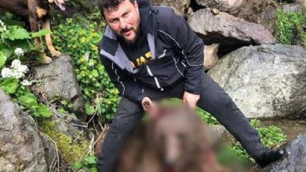Artvin'de yavru ayıyı vurup köpekleri üzerine salan şahıs yakalandı