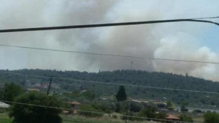 İzmir Urla ve Muğla Seydikemer'de orman yangınları