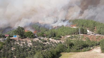 Kozan'daki yangınla ilgili 3 kişi gözaltına alındı