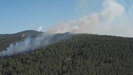 Aydos Ormanı'nda 4 farklı noktada yangın