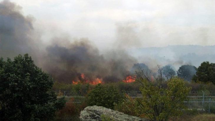 Bulgaristan sınırında yangın: Alevler Türkiye'ye sıçrayabilir