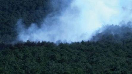 İstanbul Kayışdağı'nda orman yangını