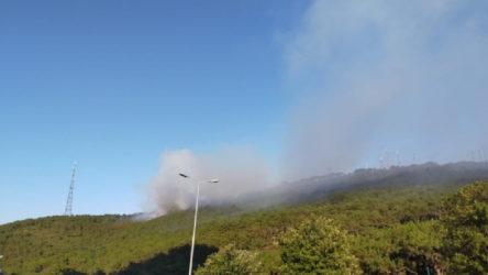 Maltepe'de orman yangını: 4 günde 4. yangın