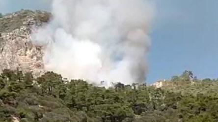 Muğla Datça'da turistik bölgede orman yangını