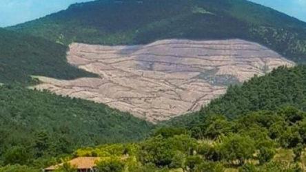 Valilik kararıyla Kaz Dağları'na girişler yasaklandı