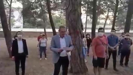 Kuran kursu için 70 yıllık ağaçlar söküldü
