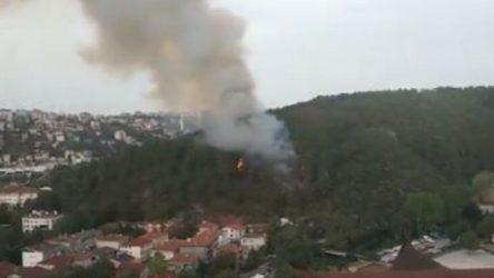 Anadolu Hisarı'nda orman yangını