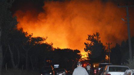 Ayvalık'ta 80 hektar ormanlık alan yandı