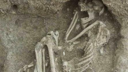 Apartmanın bahçesinde bulunan 8 bin 500 yıllık insan iskeletinin DNA'sı incelenecek