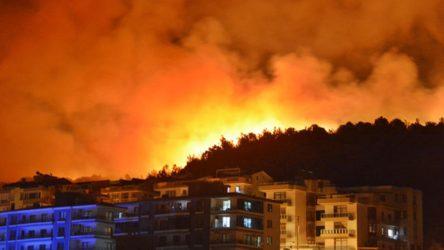 İzmir Dikili'de orman yangını: Yayılan dumanlar ilçeyi kapladı