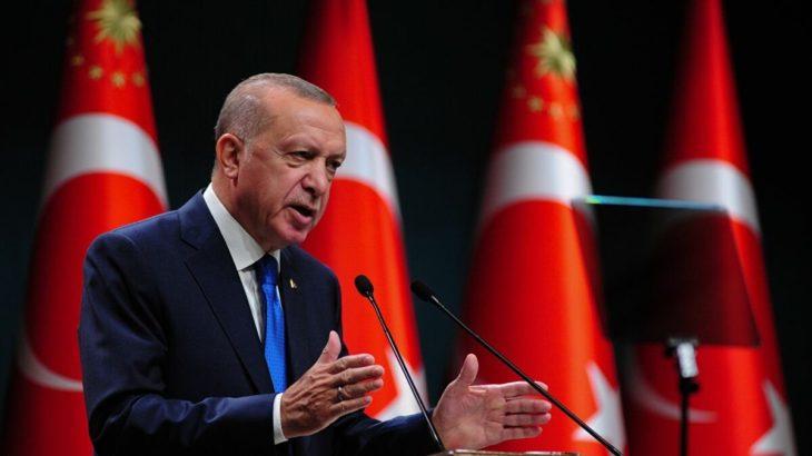 Erdoğan'ın 'Türkiye modeli': Böylesine samimi bir demokrasi ideali bulamazsınız