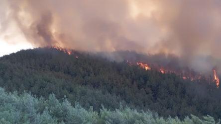 Hatay'daki orman yangını sürüyor