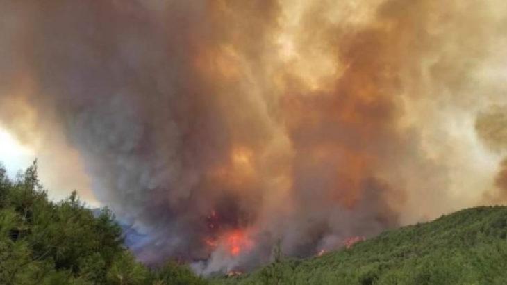 Hatay Samandağ'da orman yangını: 5 saattir müdahale sürüyor