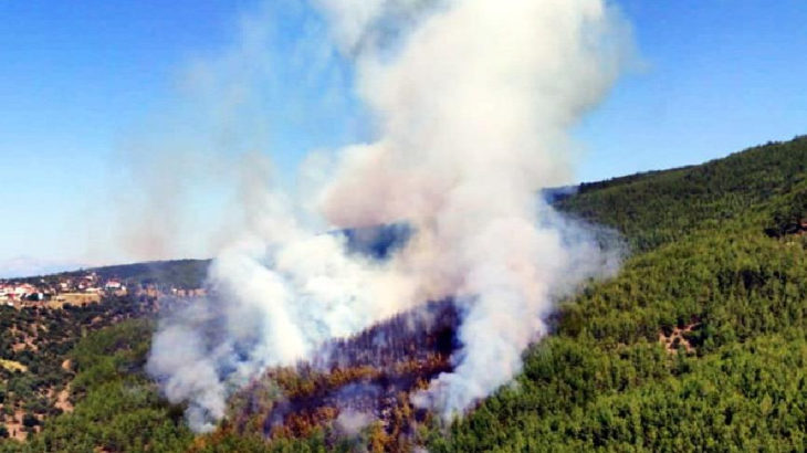 Muğla Kavaklıdere'de aynı anda 4 orman yangını