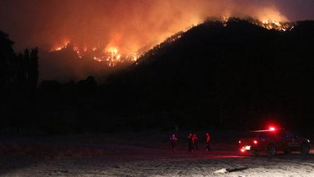 Pozantı'da orman yangını: Evler tahliye ediliyor