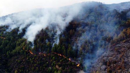 Anamur'daki yangında 150 hektar alan zarar gördü