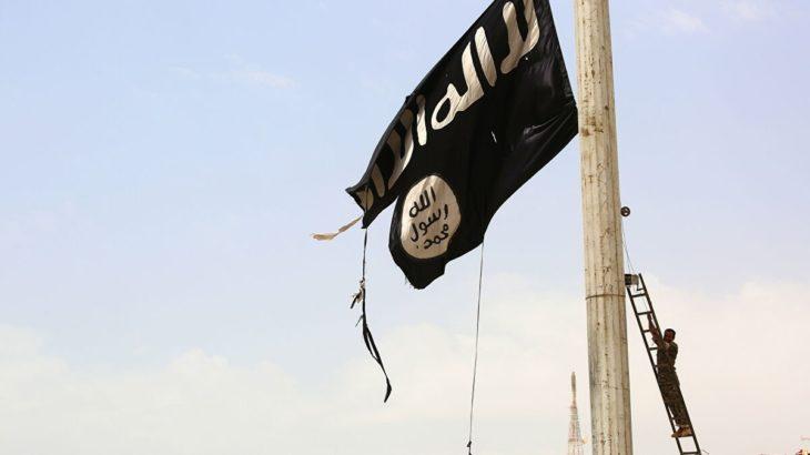 Şanlıurfa Valiliği, Macron karşıtı gösteride IŞİD bayrağı açılmasıyla ilgili bir kişinin gözaltına alındığını duyurdu