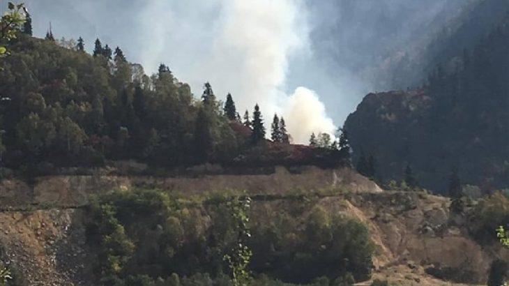 Cengiz Holding'in siyanür havuzu kurmak istediği ormanlık alanda yangın