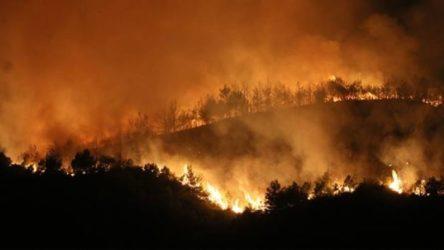 Hatay'da orman yangınları devam ediyor