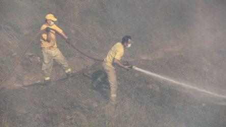 Kastamonu'da orman yangını 4 gündür sürüyor