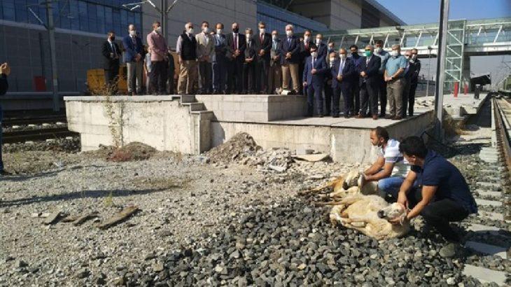 TCDD yöneticileri tren kazalarına 'önlem' olarak kurban kesip dua etti