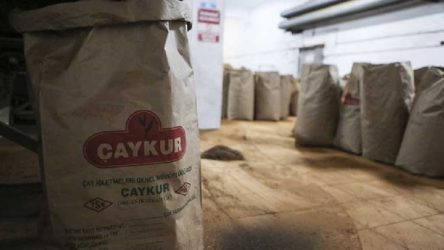 AKP'nin gözü Çaykur'da