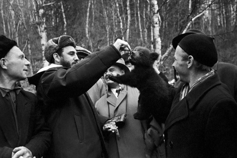 Fidel, Sovyetler Birliği ziyaretinde yavru bir ayıyla oynarken. Sovyetler, 1963